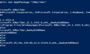 Cómo encontrar la versión de la aplicación UWP en Windows 10
