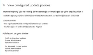Windows Update Medic Service (WaaSMedicSVC) en Windows 10