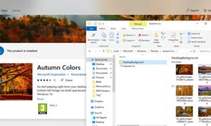 ¿Dónde almacena Windows 10 los temas?