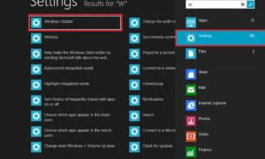 Consejos sobre cómo buscar en Windows 8