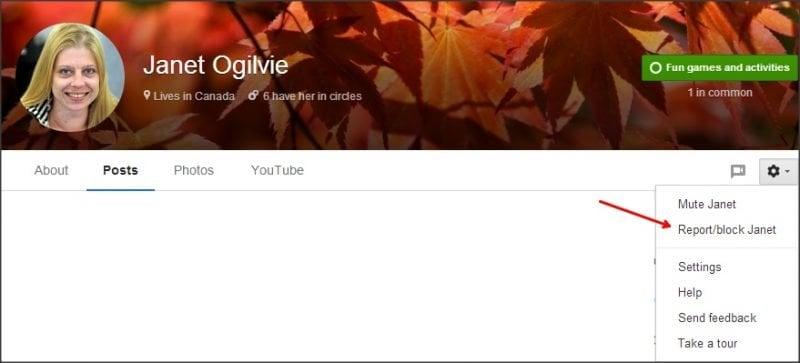 Configuración de privacidad y seguridad de Google Plus