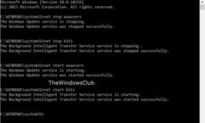 Cómo renombrar o borrar la carpeta de distribución de software en Windows 10/8/7