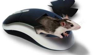 Feewhee: Controlar el tamaño de las ventanas y la transparencia con la rueda del ratón