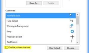 Activar la función de sombra del puntero del ratón de Windows