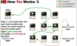 ¿Qué es Tor Network y para qué se usa?